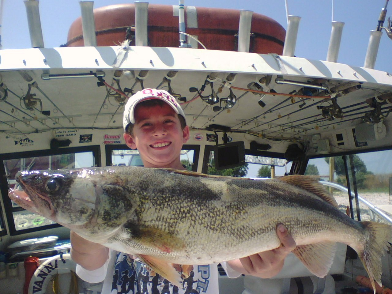 Walleye habits on lake erie for Lake erie fish
