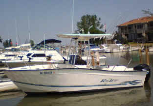 Lake Erie walleye charter boat